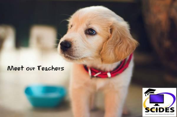 Meet Our Teachers - Lynn Aubin